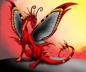 butterflydragonheart